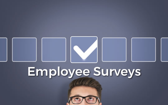 Casino Employee Surveys
